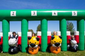 Safari Race - a safari race on inflatable animals